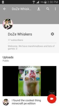 17 subs! Almost there!! by whiskers2413