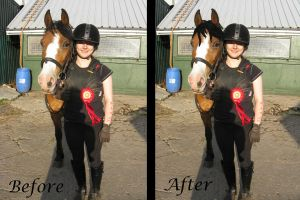 Mane paint - before + after 1 by HKW1994
