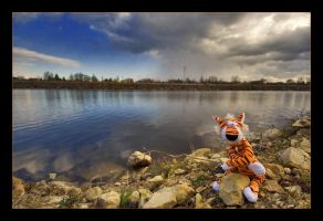Tyger, the lonely angler by arbebuk