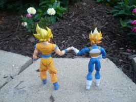 DBZ bro fist by SirDeLundo