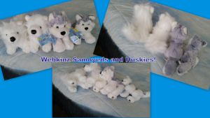 Webkinz Snow Dogs! by Vesperwolfy87