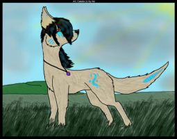 Lone Warrior by German-Shepherd-Girl