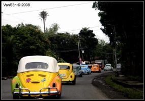 VW - Bug Run - VW Bug Train by VanS3n