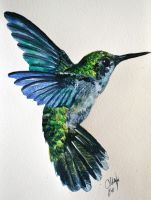 Humming Bird Watercolor by Tyleen