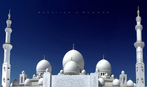 Sheikh Zayed Mosque - by day- by Sula88