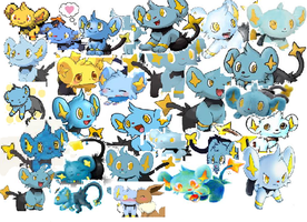 Shinx Galore by 123buizel123