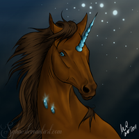 Simple Headshot -Blue Symphony by Syhne