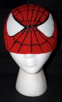 Spiderman Beanie by rainbowdreamfactory