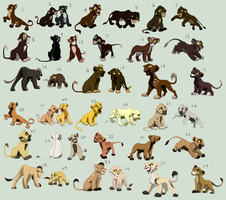 LOTS of TLK cub adopts by AForDA