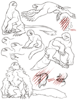 Gog - Species sheet by mute-owl