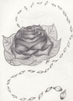Rose by Aariiadne