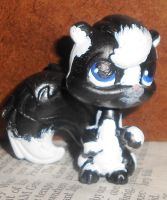 Koli the Spotted Skunk by EdgeofFear