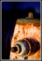 Rusty Hyrdrant by TINTPhotography