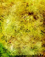 butterfly-stock_texture039 by butterfly-stock