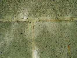 Cement brick by TinkerBeIIe143