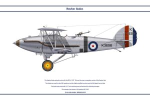 Audax GB 16 Sqn by WS-Clave