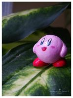 Kirby: Look to the Sky by xcalixax