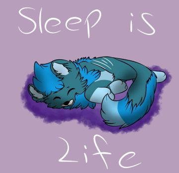 Sleep by RadioControl