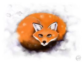 Winter Fox by C0y0te7