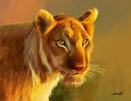 Lioness by rkamalart