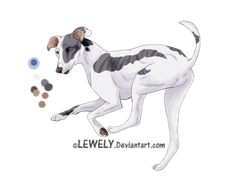 Greyhound - For adoption _CLOSED by LewKat