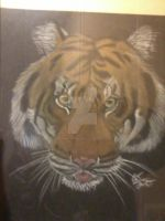 Tiger (Chalk pastel on black paper) by DreamWithinTheHeart