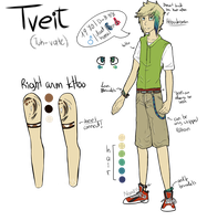 Tveit 2013 Reference by Armiyn