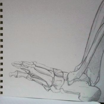 lateral lower leg complete by angiepangie486