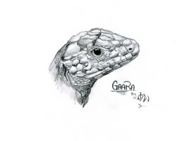 My Lizard Gaara-Realistic Draw by Yui-the-Echidna