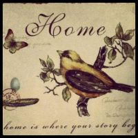 Home is where ur story begins by Kioshe-Flares