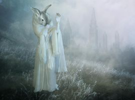 Dawn Mists by violscraper