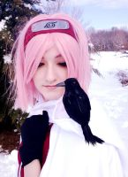 Sakura in winter 4 by JeiGoWAY