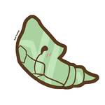 Chibi Metapod by SeviYummy