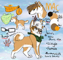 2013 Mac ref by Qythe
