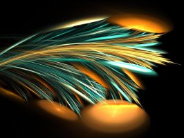 Bird of Paradise by 25percent