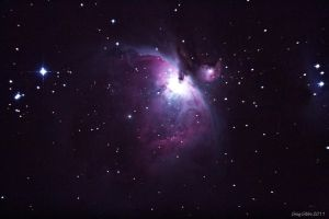 M42 First Light by CapturingTheNight