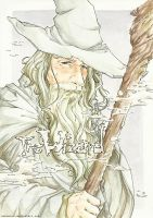 Gandalf The Grey by NekoWork