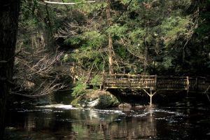 BushKill Falls 2009 by StephenMPhotography