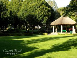 Adare by Savrille