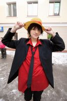 Monkey D. Luffy by AmethystPrince