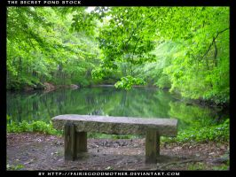 The Secret Pond Stock by FairieGoodMother