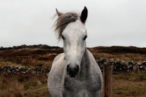 The heart of Connemara by BohemienStyle