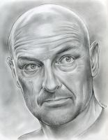 Actor Terry O'Quinn portraying John Locke in Lost by gregchapin