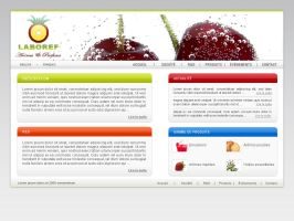 Laboref web by 4rm