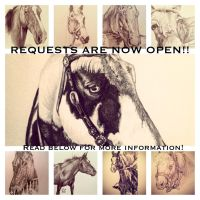 Requests are now open!! by ibeany13