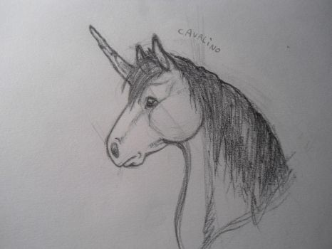 unicorn sketch by MaylaDR93