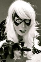 Black Cat - Lick by Lady-Kathryn