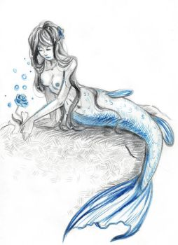 The Mermaid and the Rose by Helera