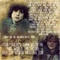 There's some good in this world, Mr. Frodo by AuburnWolf91