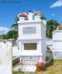 Key West Cemetery 4 by GlassHouse-1
